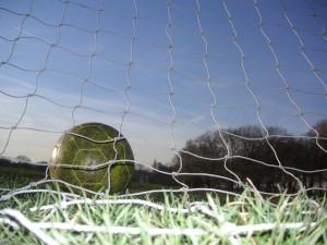 What the goal looks like